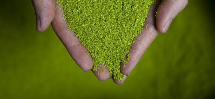 Nachhaltigkeit: Stellschrauben und Maßnahmen