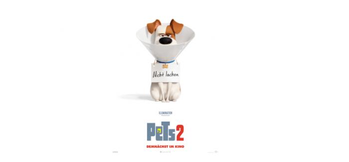 Pets 2 – es geht wieder tierisch zur Sache!